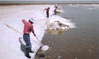 中国内モンゴル自アルシャンメイ吉蘭泰(ジランタイ)の湖